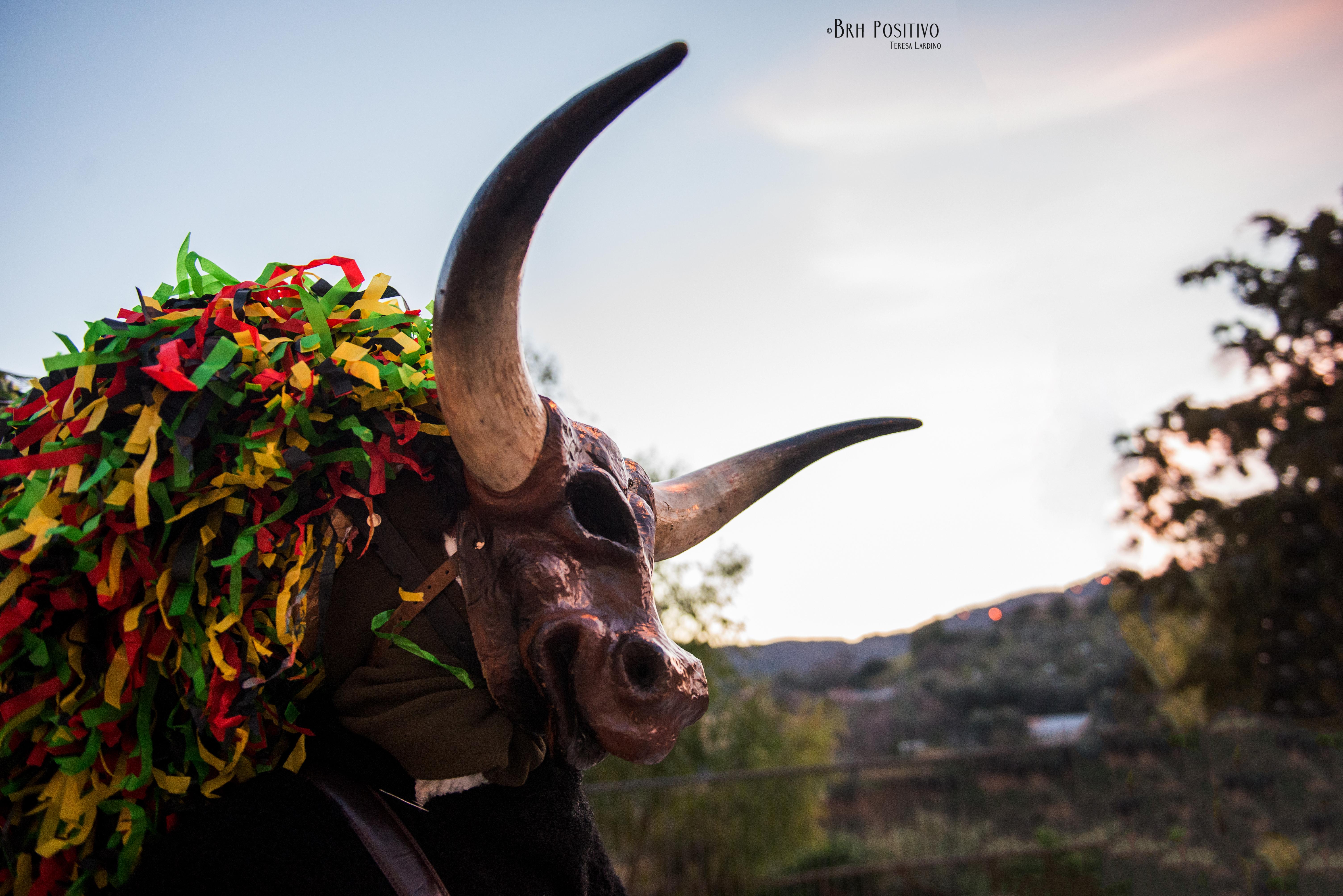 Carnevale Storico di Aliano