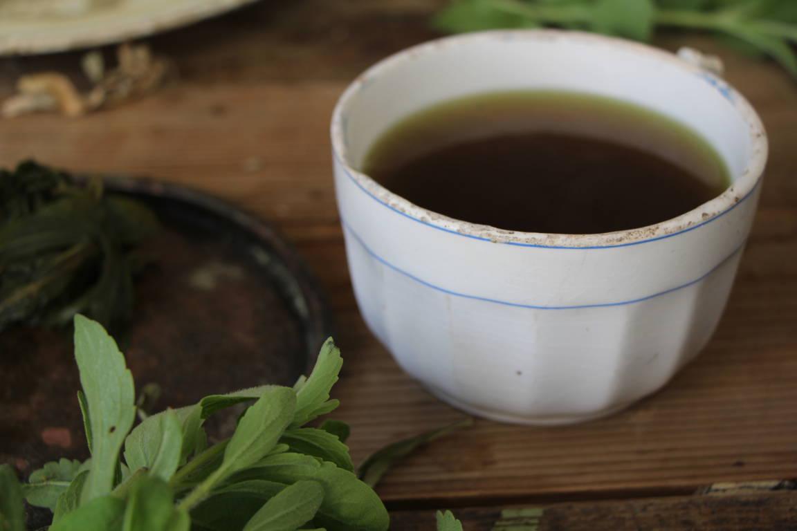 ricetta infuso di stevia